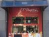 pannello_dupont_2